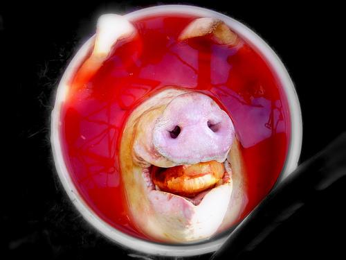 a matanza do porco 033